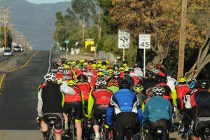 Join us for a Saturday Stage 2 Cyclery/BOSCH pb Pearl Izumi team ride....